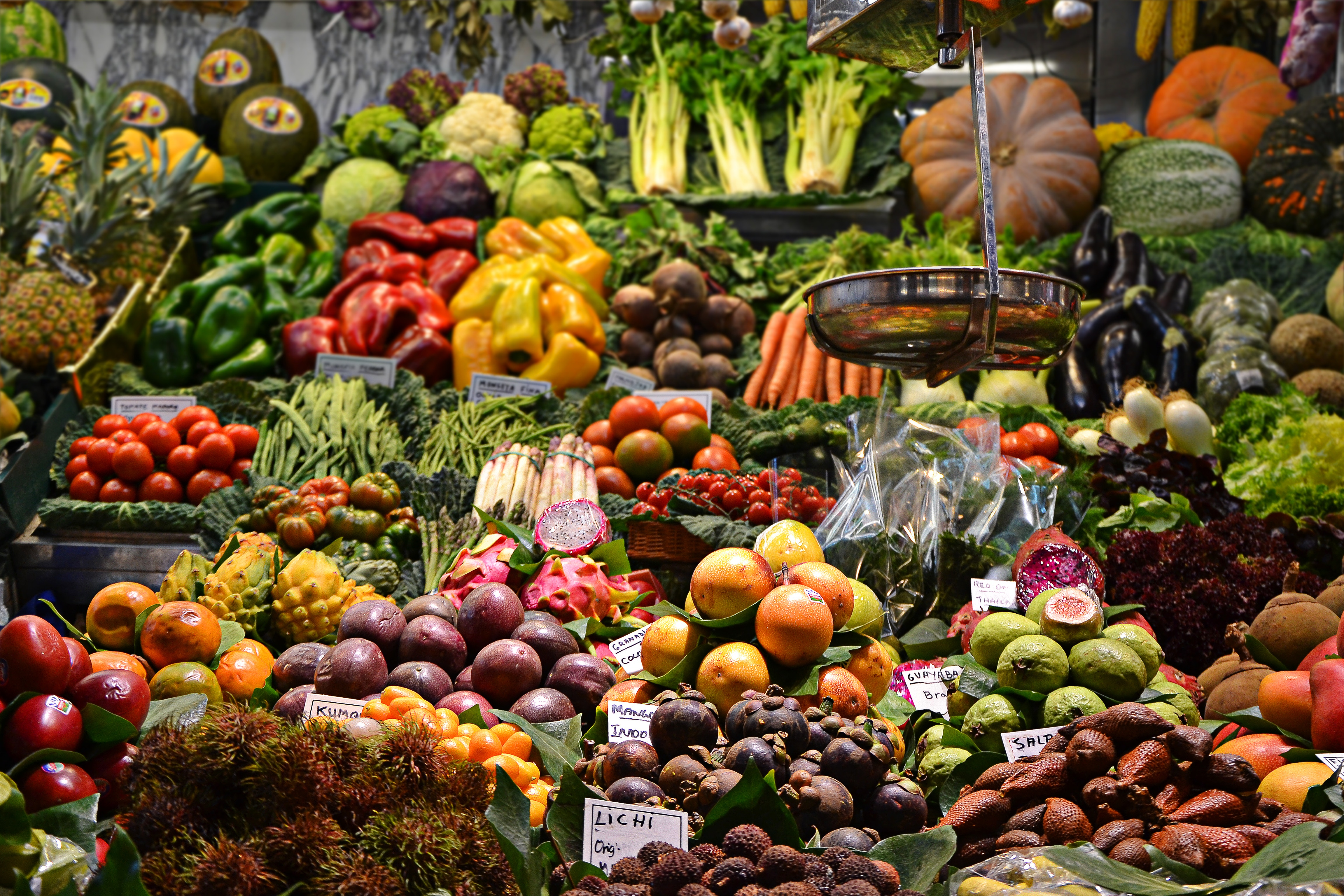 Everything You Need To Know About Organic Food