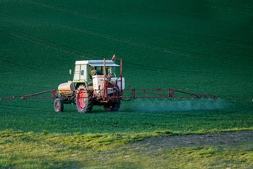 Pesticide Exposure In Womb May Hurt Your Child's IQ