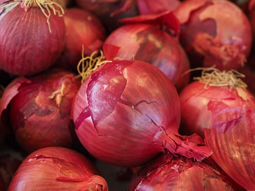 Onion And The Health Benefits Related With It