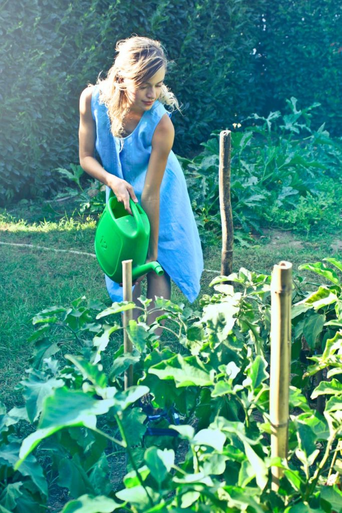 Healthy Gardening- Know More About It